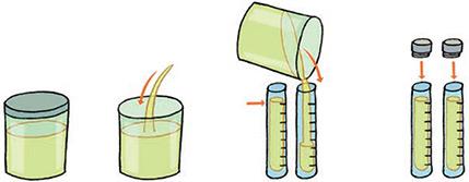 Análises à urina – recomendações